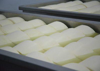 Nakas cheese industry - cheeses